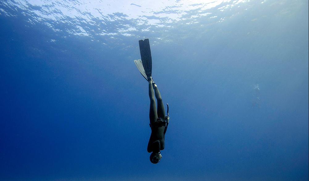 高清图_泰国夫妻自由潜水探秘深海 与鲨鱼共舞(高清组图)