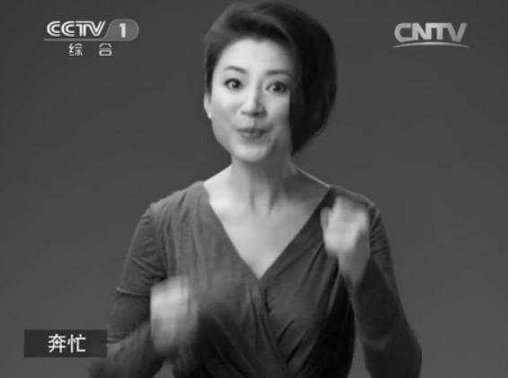 董卿撒贝宁郎永淳柴静 央视名嘴无声广告感动网友(组图)