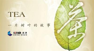 茶一片树叶的故事2_中国纪录片产业 进入高速发展期(图)-搜狐滚动