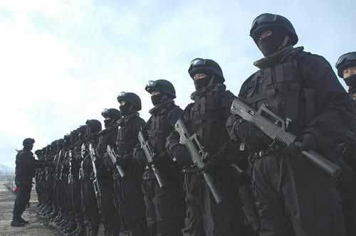 罗援 建立武警特种部队反恐 定点清除境外窝点图片
