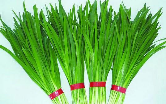 含蓝矾韭菜叶-十大蔬果坚决不能吃的部位图片