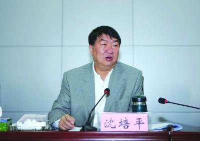 云南副省长 沈培平被调查(图)