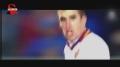 视频-斯特罗曼全进球 橙衣队副重伤告别世界杯