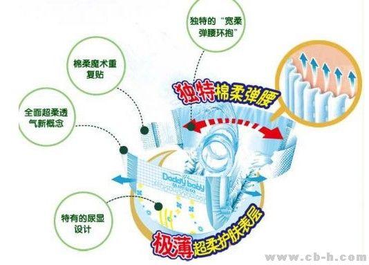 小孩身体结构图