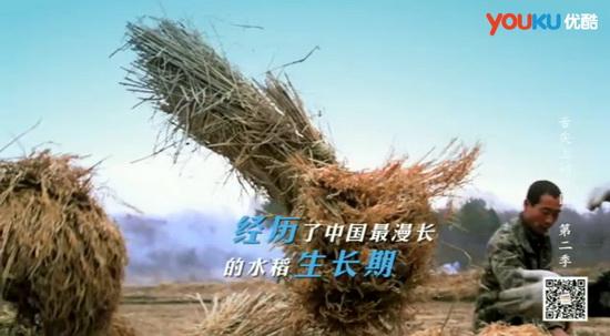 舌尖上的中国二优酷_《舌尖上的中国2》开播吃货同享优酷美食节