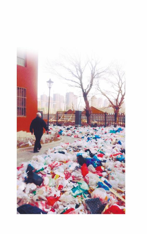 """沈阳:小区无人清理 整栋楼遭遇""""垃圾围城"""""""