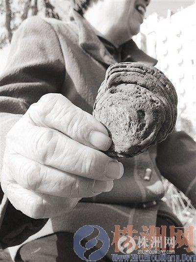 """昨日上午,石峰区的易��蚕蚣钦哒故玖怂�珍藏11年的宝贝―""""阿魏""""。"""