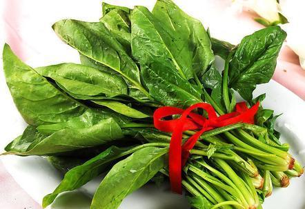 减肥菜排行榜_蔬菜减肥排行榜,苦瓜只能排第六,第一名居然是冬瓜
