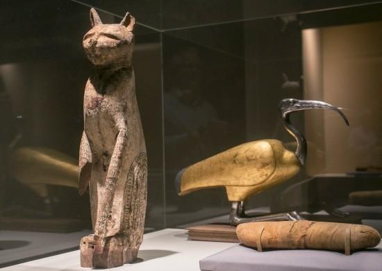 展品有猫木乃伊棺材(左)和朱鹭棺材。