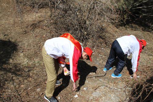 志愿者捡垃圾