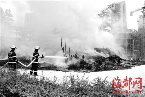 校园内烧毛竹引火灾,浓烟熏周边小区