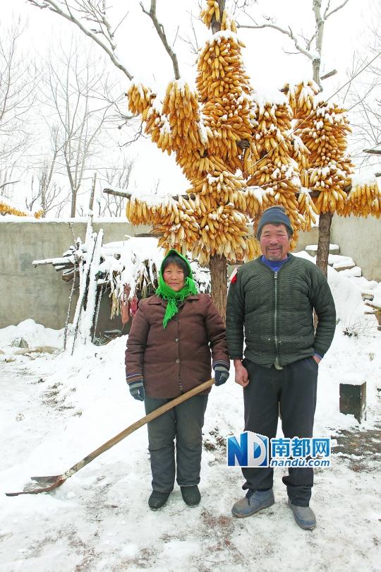 风流小农民-乡村里的中国 背后的农民 这个土地不养人