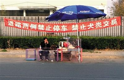 """北京一狗市外,商贩在""""禁止犬类交易""""的条幅下摆摊。"""
