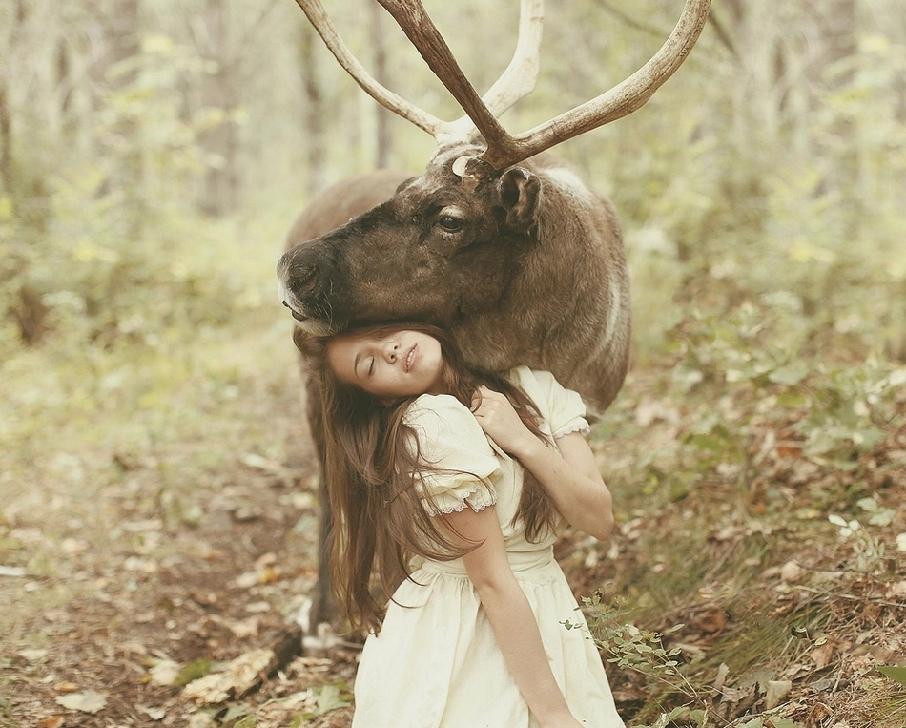 少女猛獣 一风変野性写真组图 搜狐滚动