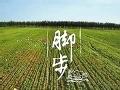 舌尖上的中国第2季第1集:脚步