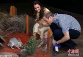 金正恩也想去 盘点贵族皇室最爱的动物园