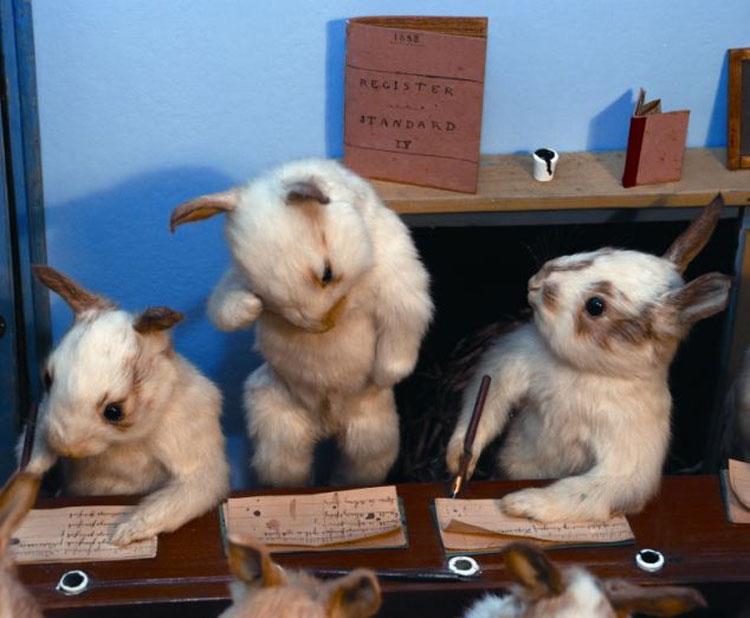创造的动物王国中,有小猫打门球,兔子宝宝集体上课,松鼠吸雪茄等场景.