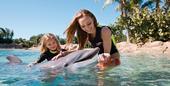 与海洋动物亲密接触 探访全球六大顶级水族馆