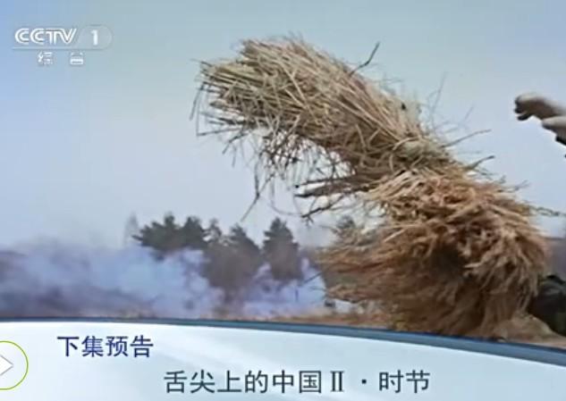 舌尖上的中国第二季第三集预告:用美食感受中国魅力(组图)图片