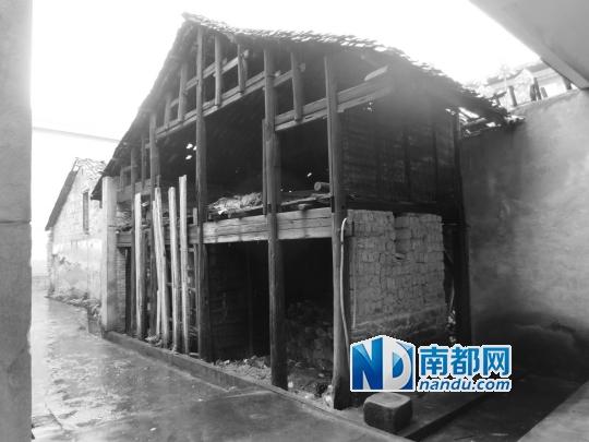 邓爱仔位于水北镇的老宅,多年来早已荒弃。
