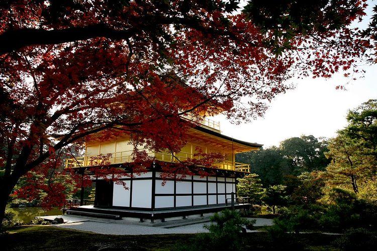 旅游从业者建议:去日本旅游注意啥?图 搜狐滚