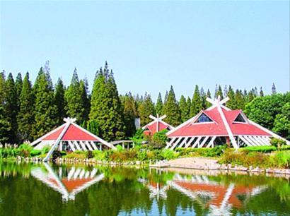 东平国家森林公园内的标志性建筑地理地球自转高中图片