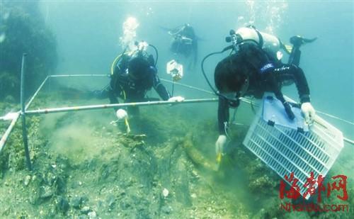 中国水下考古队队员在肯尼亚海域进行水下考古发掘