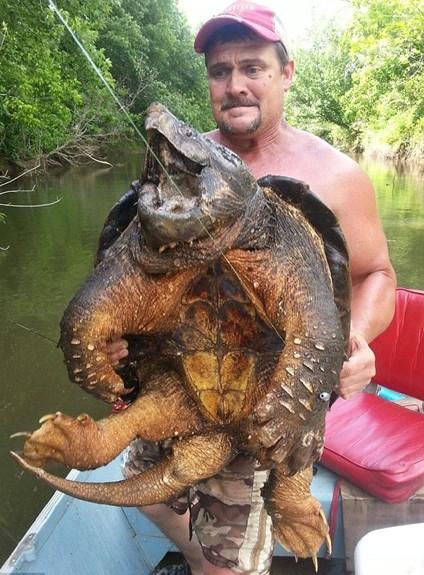 美国垂钓爱好者与鳄龟合影.