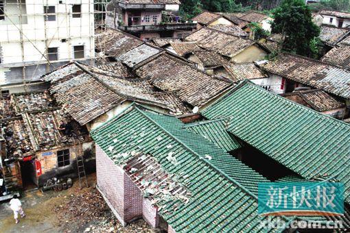 黄竹园村祠堂房顶的瓦块也被龙卷风刮掉。新快报记者 祝贺/摄
