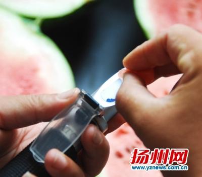 9个西瓜检测打分 早春红玉最甜沙头8424最好吃