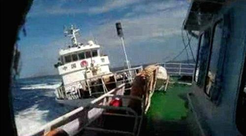 越媒:中国渔船撞沉越南渔船 渔民已获救(6)-搜狐