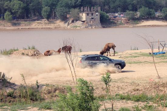 破界自由 Jeep自由光高性能版登陆齐鲁高清图片