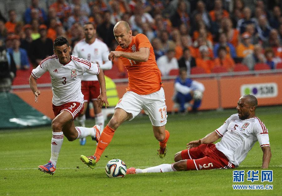 世界杯热身赛 范佩西伤退荷兰2比0胜威尔士(图)-搜狐福建