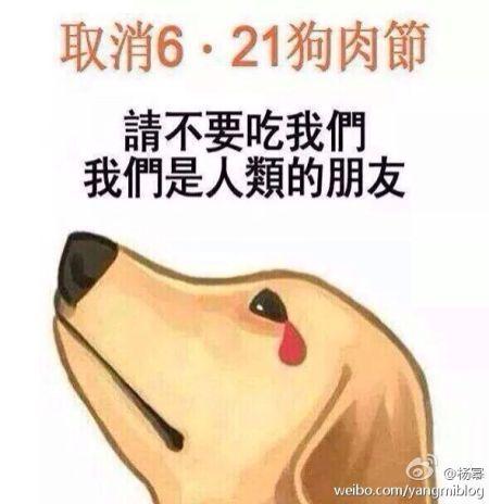 广西玉林市民:你不吃狗肉别影响我们吃(1)_社会万象_光明网