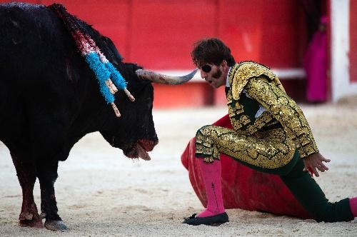 图文:西班牙斗牛之舞 独眼斗牛士挑衅公牛