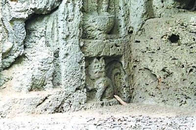 """/类似""""招财猫""""造型的猫型石雕。资料照片"""