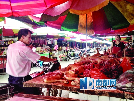 昨日,玉林垌口市场,一位市民在购买狗肉。南都记者 舒朗 摄