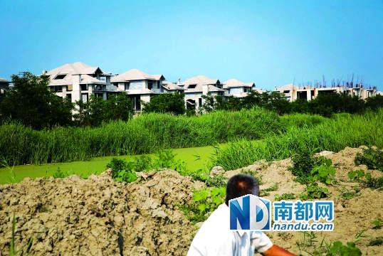 京津新城一个停工中的别墅区。隔着小河,周良庄镇的老王在这里养牛,他们村的田地在京津新城征地时以每亩1万元的赔偿金被征用。