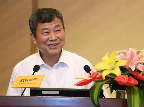 中国经济体制改革研究会副会长石小敏。图片来源:搜狐财经