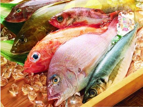苏州中茵皇冠假日酒店鲍鱼王子中餐厅引进了潮汕美食