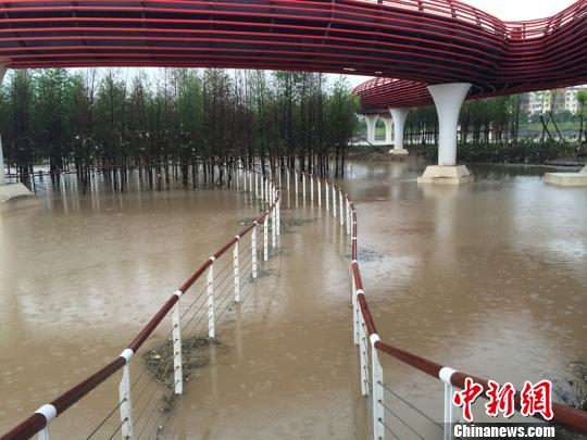 位置低的步行桥被淹没 奚金燕 摄
