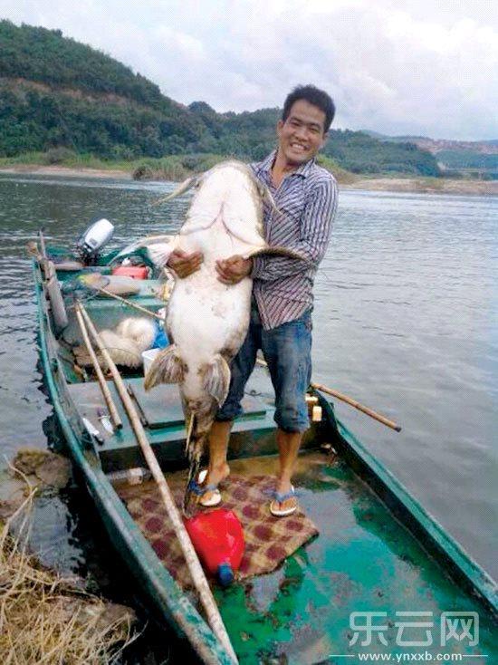 渔民展示捞到的大鱼,有一米多长。