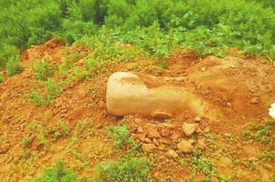 """当时石像""""躺在""""土堆里,露出半个头。 图片由张先生提供"""