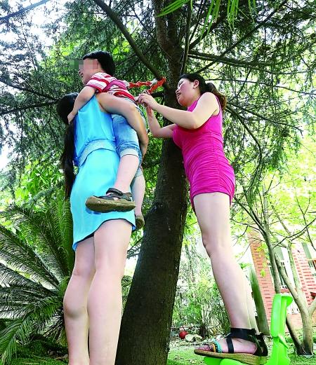 """恐高孩子""""吊""""树上练胆"""