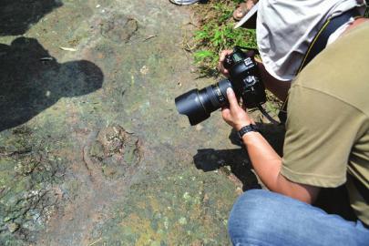 拍摄恐龙足印