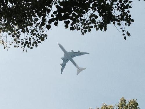 飞机飞过柏林