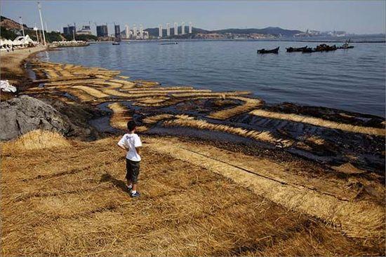 2010年7月16日大连新港的那场大火只是掀开了潘多拉的魔盒,此后的4年8起石化事故预示着噩梦未划上休止符。澎湃资料
