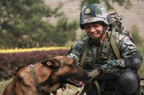 军犬奇兵_奇兵》改编自冯骥的长篇小说《特警犬王》,由于讲述的是军人与军犬