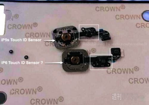 iPhone 6指纹识别传感器Touch ID曝光:没啥变化