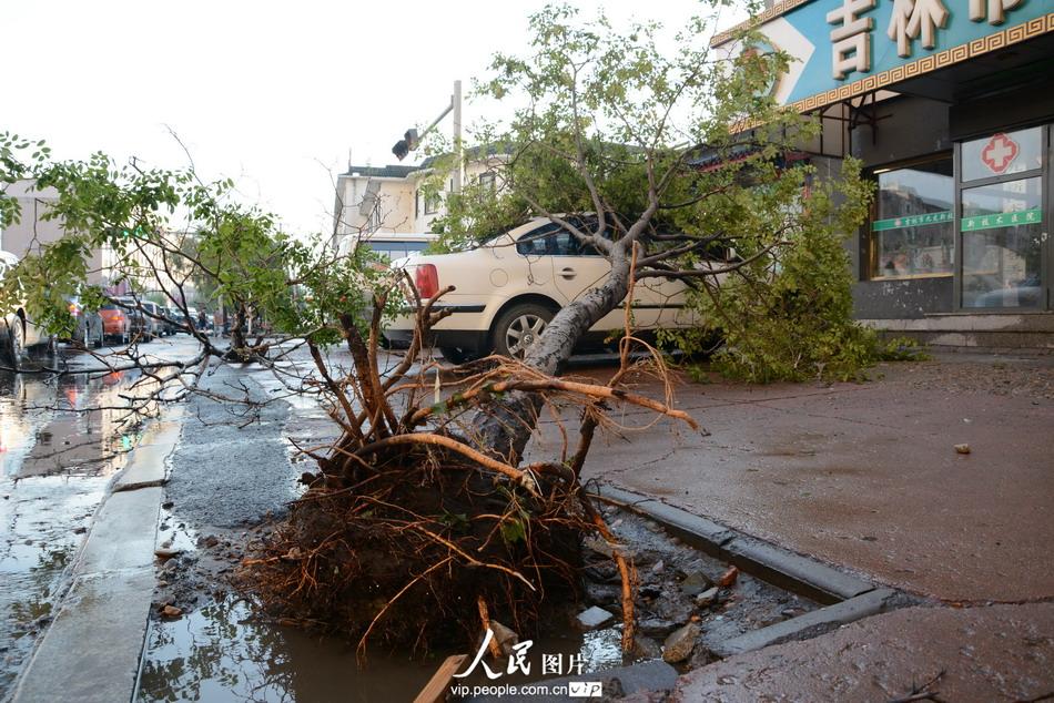 2014年7月23日,在吉林市光华路与越山路交汇处,市民和车辆在街头淌水前行。王明铭/人民图片